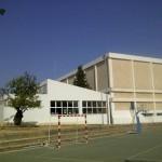 Palma-20120817-00142_r1_c1